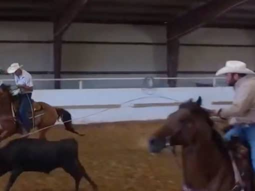 Dallas Calf Roping for Special Needs